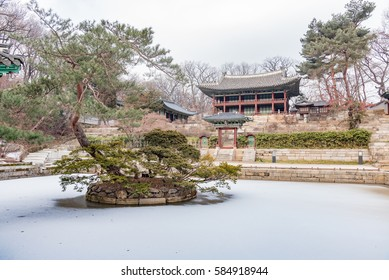 Korean traditional architecture in the secret garden of Changdeokgung Palace in winter season - Seoul, Republic of Korea. World Heritage Site