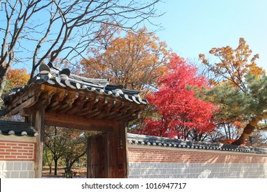 The korean traditional door (entrance) with the colourful leaves in autumn at the Gyeongbokgung Palace, Seoul, South Korea