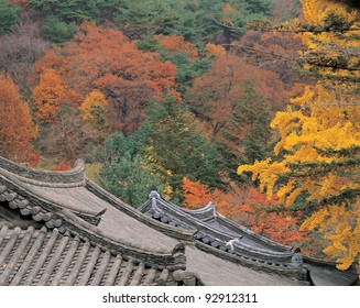 Korean Traditional Temples
