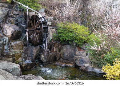 Korea's traditional waterwheel pond and nature