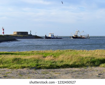KORNWERDERZAND, THE NETHERLANDS - SEPTEMBER 19, 2018: A fishing boat is towed into the sluice. Many seagulls are trying to get some caught fish.