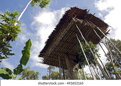 Korowai Treetop House Deep Inside the Forest. Papua, Indonesia
