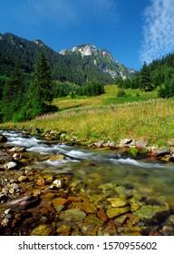Koscieliska Valley, Tatry National Park - Shutterstock ID 1570955602