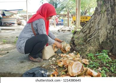 Kota Belud,Sabah-Oct 27,2018: Local street seller cut coconut by knife for coconut juice at Tamu Kota Belud. Tamu Besar Kota Belud is an annual big traditional market in Sabah, Malaysia.