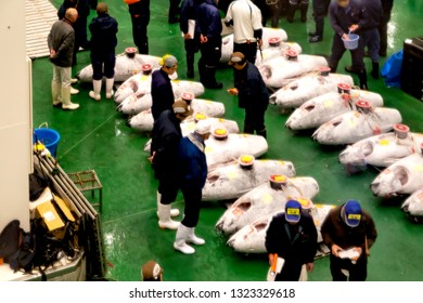 Koto, Tokyo, Japan-February 7, 2019: Toyosu Market: Fish wholesale market in Toyosu Market