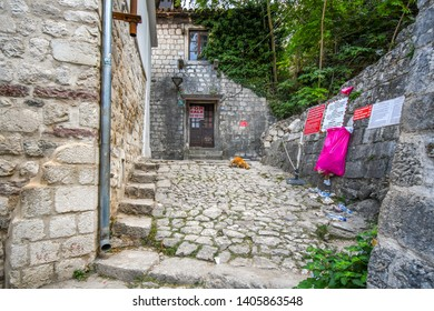 Kotor, Montenegro - September 19 2018: A stray orange tabby cat chases a rodent in a dead end alley just off the path to the Kotor Castle in the city of Kotor, Montenegro.