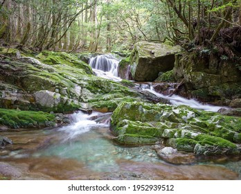 Koza River in Japan with beautiful water - Shutterstock ID 1952939512