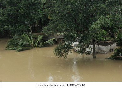 KOZHENCHERY, INDIA - AUG 19:Buildings are submerged in the flood water on on August 19,2018 in Pathanamthitta,Kerala, India. Kerala was badly affected by the floods during the monsoon season