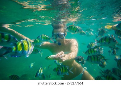 Krabi, Thailand, 30 october 2014: Tourists snorkeling with exotic fishes near Chicken islang, Krabi, Thailand.