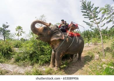 Elephant Noise Images, Stock Photos & Vectors | Shutterstock