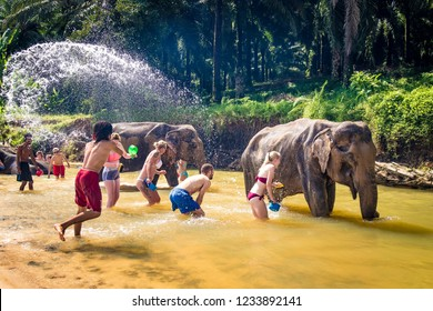 KRABI, THAILAND - NOVEMBER 19, 2018: Tourists are doing a spa for elephants in Krabi Elephant House Sanctuary
