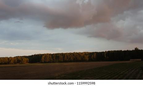 krajobraz niebo las - Shutterstock ID 1159992598