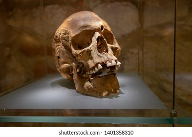 KRAKOW / CRACOW, POLAND - DECEMBER 9, 2019: The medieval human skull displayed at Krakow Historical Museum - Old Market Underground Branch. Krakow, Poland