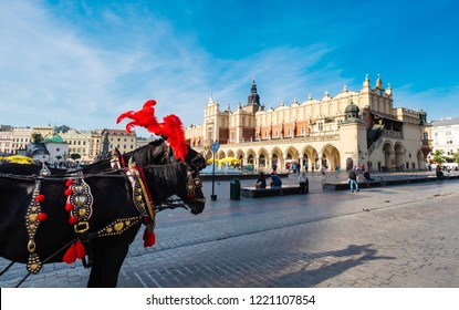 Krakow, Poland - 18 September 2018: Beautiful white carriages with dark hourses in fancy red outfit on the Krakow cityspace