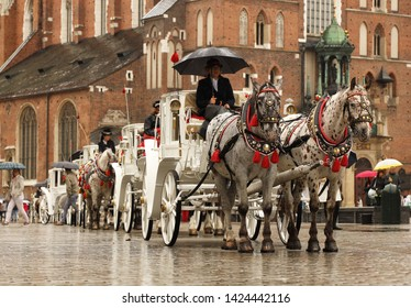 Krakow, Poland - 9 3 2019: A line of horse drawn carriages stand in rainy weather on the square near the St. Mary's Church. A young girl, coachman, is sitting under an umbrella on the beam of carriage