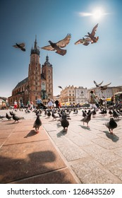 Krakow, Poland - August 28, 2018: Doves Birds Flying Near St. Mary's Basilica. Pigeons Flying Near Church Of Our Lady Assumed Into Heaven. UNESCO World Heritage Site.