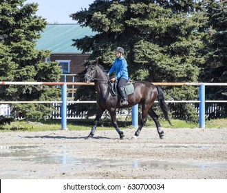 Krasnodar, Russia - April 28, 2017: Equestrian sports with teenagers. Horse Club. A girl is riding a horse.