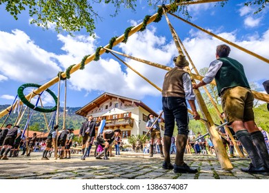 Kreuth, Germany - May 1: A traditional maypole is being set up by the local bavarians during the typical May Day festival on May 1, 2019 in Kreuth in Germany.