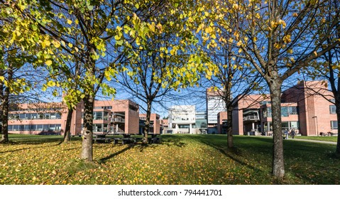Kristiansand, Norway - November 5, 2017: The exterior of the University in Kristiansand, UiA. Trees in the front.