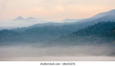 Krungshing fog view point/ sea of fog, at Noppitam, Nakhon Si Thammarat, Thailand.