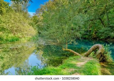 Krupa river source, Bela Krajina (White Carniola) region in Slovenia, Europe. - Shutterstock ID 1038258040