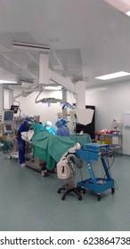 KUALA LUMPUR, 19 April 2017: group of veterinarian surgeons in operation room