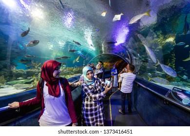 KUALA LUMPUR, MALAYSIA, JANUARY 5., 2017: The aquarium, an oceanarium located beneath Kuala Lumpur Convention Centre within Kuala Lumpur City Centre, opened in 2005.