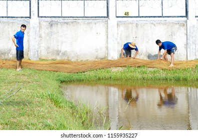 Kuala Lumpur, Malaysia. March 30, 2013. Shot of daily activities in pet fish farm. Catching farm breed arowana. Arowana is one of famous pet fish and became trending in Asia.