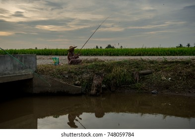 Kuala Selangor, Selangor - 2nd November 2017 : activity fishing by daughter and mother in paddy field river during sunset