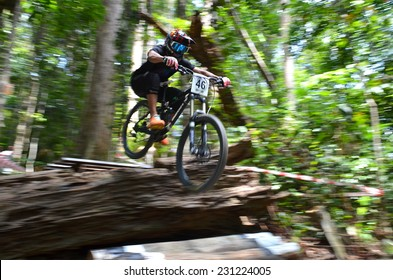 KUANTAN - NOVEMBER 8: unidentified mountain biker in action during training for downhill challenge on November 8, 2014 in Teluk Cempedak, Kuantan, Pahang, Malaysia.