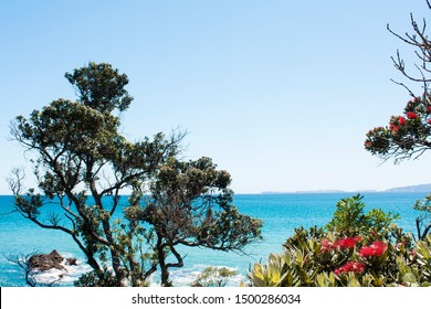 Kuaotunu beach from the north. Turquoise and blue water, rocky, great for snorkelling. Pohutukawa, NZs christmas tree. Summer scene, beautiful day, Coromandel is paradise. Postcard perfect sunny day.