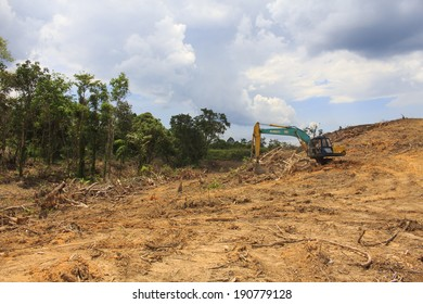 KUCHING, MALAYSIA - MAY 04 2014: Deforestation. Photo of tropical rainforest in Borneo being destroyed to make way for oil palm plantation.