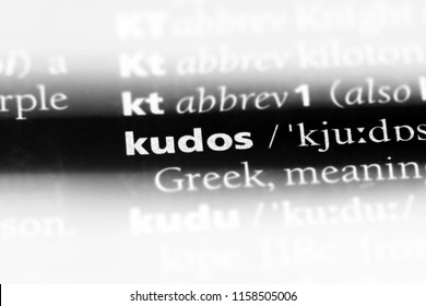 kudos word in a dictionary. kudos concept.