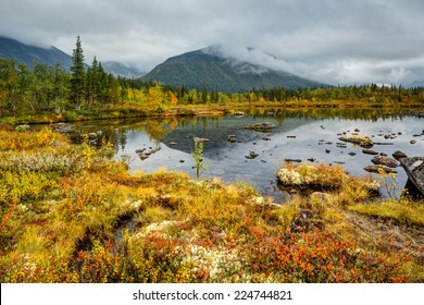 Kuelporr mountain with peak hidden in clouds reflected in shallow Polygonal northern taiga forest lake with lichen-covered rocks and colorful grass in foreground