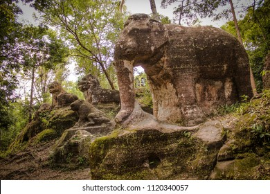 Kulen Mountain is one of the national parks in Cambodia. It is a deep historically significant destination in the area. There are 56 hidden ruins in this mountain. Srah Damrei or Elephant pond