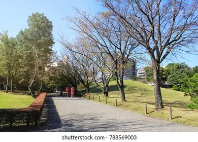 Kumamoto, Japan Nov 11, 2017 Suizenji Jojuen is a beautiful and famous Japanese garden of Kumamoto Prefecture. It was built in the 17th century by the Hozokawa family.