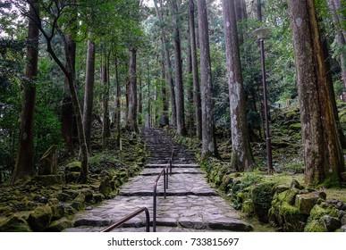 Kumano Kodo pilgrimage routes in Wakayama, Japan. Kumano Kodo refers to a network of pilgrimage trails through the southern Kansai region.