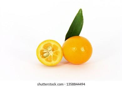 kumquat midget orange on white background