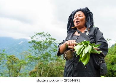 Kundasang Sabah Malaysia - July 4, 2015 :Shaman, Lukanang Induk, 63, performing ritual to appease the spirit of Akinabalu, the guardian of Mount Kinabalu.The rituals held after quake hit the mountain.