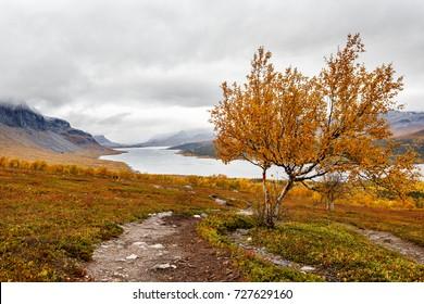 Kungsleden hiking Trail in Sweden in Autumn