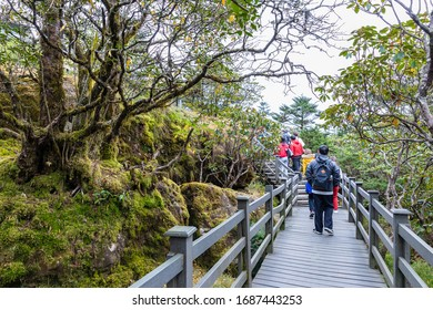 KUNMING,CHINA-OCTOBER 26,2019:  Tourists walking on Wooden walkway ,It is a route that leads up to the viewpoint of Jiaozi snow Mountain. Tourist attractions of Yunnan