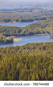 Kuopio area in Finland. Island, forest lake. Finnish landscape. Vertical