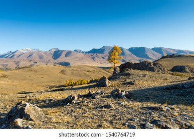 The Kurai steppe is autumn. Chuya River Valley.  Altai Republic of Kurai steppe. Autumn.