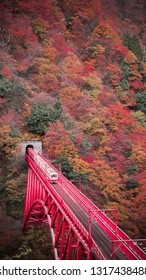 Kurobe gorge in Toyama prefecture, Japan, Scenic view with colorful leave in autumn and a train is almost approach the railway station