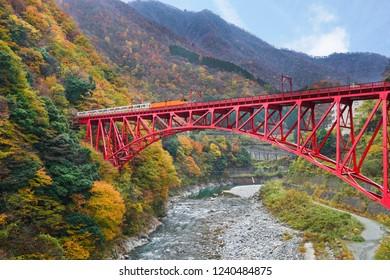 Kurobe kyoukoku train travel on the shin yamabiko bridge s popular with tourists during the Autumn Season in Toyama, Japan.