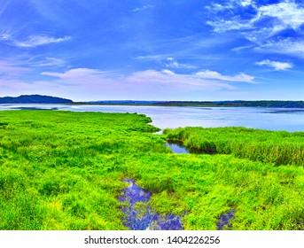 Kushiro City, Hokkaido, Shirautoro swamp and Kushiro wetlands in early summer