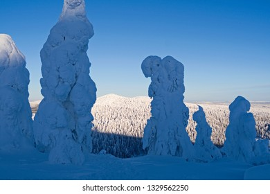 Kuusamo / Finland: Magnificent view to the northeast from Saarua top in Ruka over Lapland on a beautiful day in February