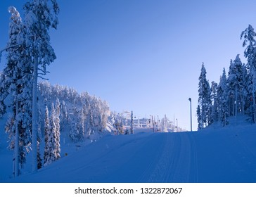 Kuusamo / Finland: View from the Talvijarvi slope to the upper lifts and slopes in the Ruka ski area on a beautiful and sunny day in February