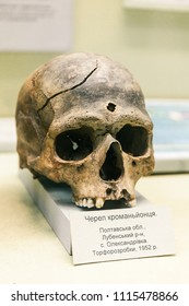 KYIV, UKRAINE - JUNE 16, 2018: National Museum of Natural Sciences of Ukraine. Anthropology ancestor, caveman, homo erectus. Prehistoric skull of Cro-Magnon.