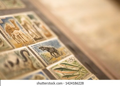 Kyiv, Ukraine -  March 24, 2019: Different animal stamps in the collection of stamps in the album. Philately.